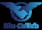 Blu-Collab