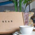 BEAR Pods 1