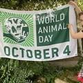 Bailey and World Animal Day flag 1