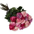 OnlyRoses Fresh Cut Roses