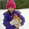 Could you share your garden with a few clucky hens this winter and beyond?