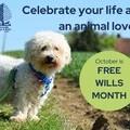 Free Wills Dog