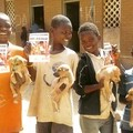 Four boys with their vaccinated dogs in Blantyre, Malawi
