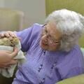 Pauline Peters meets the African hedgehog