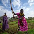 World Food Programme, Kenya (WFP / R.Skullerud)