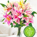 Roselily bouquet, double-flowers & pollen-free