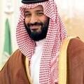 Crown Prince Mohammed bin Salman Al Saud, 2017