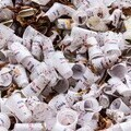 Coffee Cup in Landfill