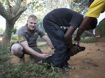 Luke vaccinating a dog in Malawi