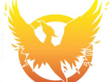 Phoenix Premier Acquisitions logo